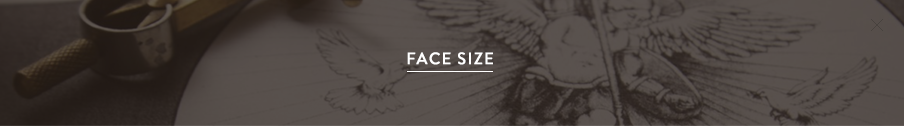 facesize.png